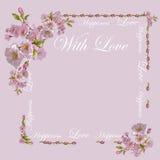 Flores hermosas como regalo en un fondo coloreado Imágenes de archivo libres de regalías