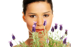 Flores hermosas de la lavanda del olor de la muchacha Fotos de archivo libres de regalías