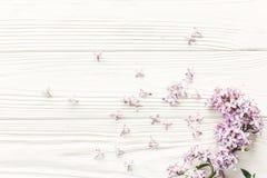 Flores hermosas de la lila en el top de madera blanco rústico del fondo VI imagenes de archivo