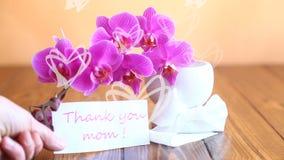 Flores hermosas de la orquídea del Phalaenopsis