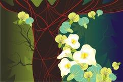 Flores hermosas de la tarjeta y un árbol abstracto Foto de archivo
