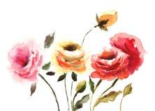 Flores hermosas de las rosas Foto de archivo libre de regalías