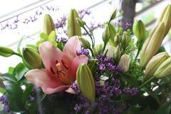 Flores hermosas de los colores del rosa, púrpuras y verdes en el fondo blanco fotos de archivo libres de regalías