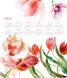 Flores hermosas de los tulipanes Fotografía de archivo