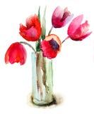 Flores hermosas de los tulipanes Foto de archivo libre de regalías
