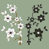 Flores hermosas del flor Fotografía de archivo