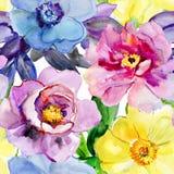 Flores hermosas, ejemplo de la acuarela Imagen de archivo libre de regalías