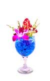 Flores hermosas en copa de vino con hidrogel Foto de archivo