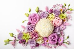 Flores hermosas en el fondo blanco imagen de archivo libre de regalías