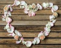 Flores hermosas en el fondo de madera, diverso, lugar para el texto, primer fotos de archivo