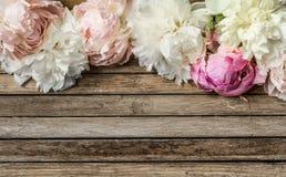 Flores hermosas en el fondo de madera, diverso, lugar para el texto, primer imágenes de archivo libres de regalías