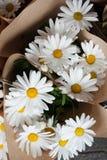 Flores hermosas en floristería imagen de archivo