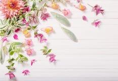 Flores hermosas en fondo de madera Fotos de archivo libres de regalías