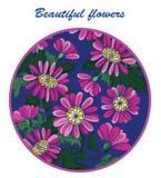 Flores hermosas en un círculo de la púrpura en un fondo azul foto de archivo libre de regalías