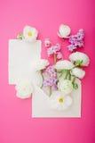 Flores hermosas y tarjetas de papel en fondo rosado Endecha plana, visión superior Concepto adornado para el blog el casarse o de Imagen de archivo libre de regalías