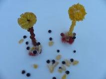 Flores, hielo de la fruta Fotos de archivo