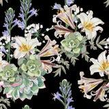 Flores, hierbas y suculento reales blancos de los lirios en fondo negro stock de ilustración