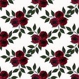 Flores inconsútiles del modelo de las rosas en el fondo blanco Imagenes de archivo