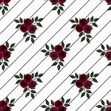 Flores inconsútiles del modelo de las rosas rojas en el fondo blanco Imagen de archivo
