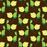 Flores inconsútiles del verde de la textura en marrón Fotografía de archivo libre de regalías