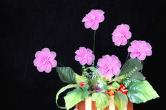 Flores isoladas Fotos de Stock Royalty Free
