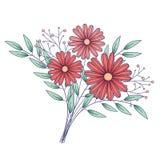 Flores isoladas, ramalhete de tiragem ilustração do vetor
