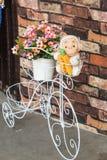 Flores levando da bicicleta branca com parede marrom Fotos de Stock