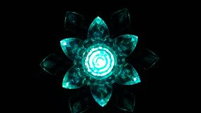 Flores ligeras foto de archivo