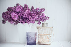 Flores lilás Imagem de Stock