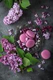 Flores lilás e macarons da amora-preta na placa do vintage sobre o gre Foto de Stock Royalty Free