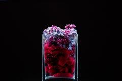 Flores lilás e tinta que rodam na água em um vaso de vidro em um fundo preto Fotos de Stock Royalty Free