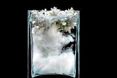 Flores lilás e tinta que rodam na água em um vaso de vidro em um fundo preto Imagem de Stock