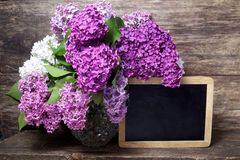 Flores lilás em um vaso e em um quadro-negro Imagem de Stock