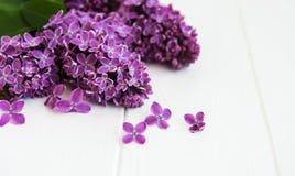 Flores lilás em uma tabela Imagens de Stock Royalty Free