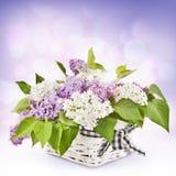 Flores lilás na cesta Imagem de Stock Royalty Free