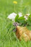 Flores lilás na cesta do birchbark na grama Imagem de Stock Royalty Free
