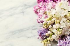 Flores lilás no fundo de mármore Copie o espaço Vista superior Imagem de Stock Royalty Free