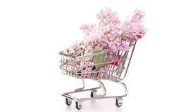 Flores lilás no trole da compra Imagens de Stock Royalty Free