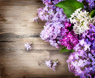 Flores lilás sobre o fundo de madeira imagens de stock