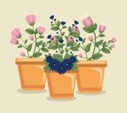 Flores lindas de las flores con las hojas dentro del pote de la planta libre illustration