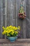 Flores médicas del verano - stJohns mosto y manojo de las hierbas del echinacea en la pared de madera Imagen de archivo