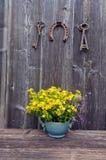 Flores médicas do wort de St Johns no vaso e na ferradura da antiguidade com chave Imagem de Stock Royalty Free