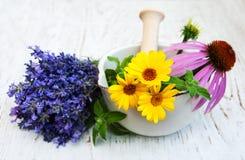 Flores médicas en mortero Fotografía de archivo