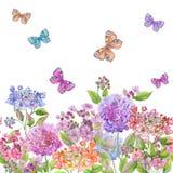 Flores macias bonitas da hortênsia e borboletas coloridas no fundo branco Molde quadrado Teste padrão floral sem emenda ilustração do vetor