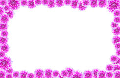 Flores (marco de la foto) imagen de archivo