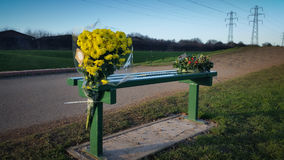 Flores memoráveis Fotos de Stock