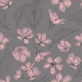 Flores modelo inconsútil, flor de la cereza de la primavera Fondo retro del vector libre illustration