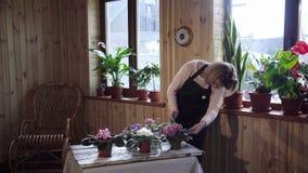 Flores molhando da jovem mulher dentro da casa filme