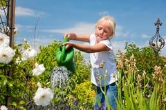 Flores molhando da menina Imagem de Stock