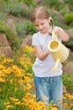 Flores molhando da menina Fotos de Stock